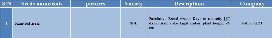 snb wheat seed-1